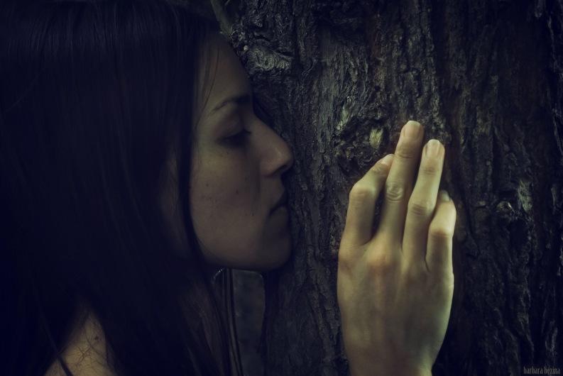 El árbol y yo