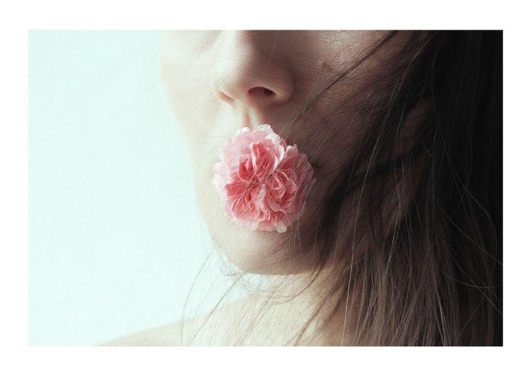 barbara_bezina_my_gardens_roses_fv